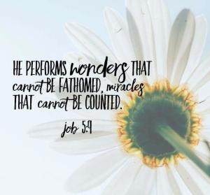 f8df6b470f2bf854ba18a7c1baef943a-inspirational-scriptures-scripture-quotes